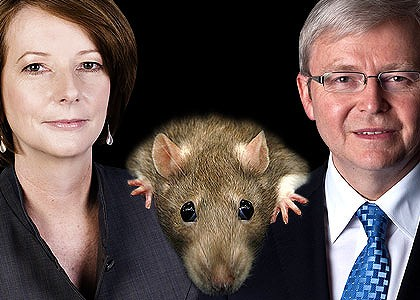 Who is the shadowy figure whose damaging leaks are derailing Julia Gillard's campaign? Graphic: Liam Phillips