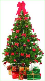 christmas-tree-decorated
