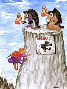 griffon-vulture-funny-cartoon