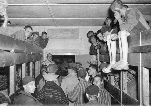 This is the sort of accommodation that was the norm in concentration camps. Please note that there is no individual rooms, no bedding inadequate clothing and all of the inmates are literally starving
